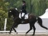 feuri-being-rode-550